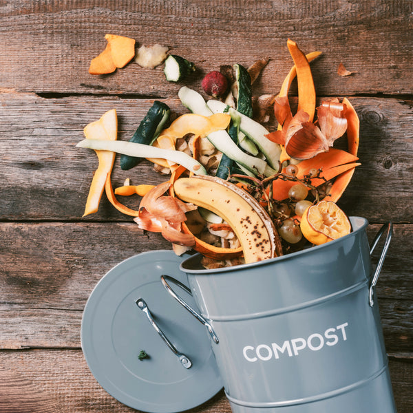 How To Make Your Own Compost!