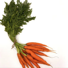 Load image into Gallery viewer, Organic Carrot Seeds-Seeds-Seed n Sow