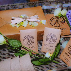 Seed n Sow Signature Seed Kit - Flowers and Indoor Plants