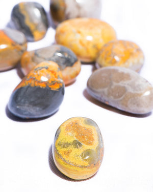Load image into Gallery viewer, Bumble Bee Jasper Tumbled