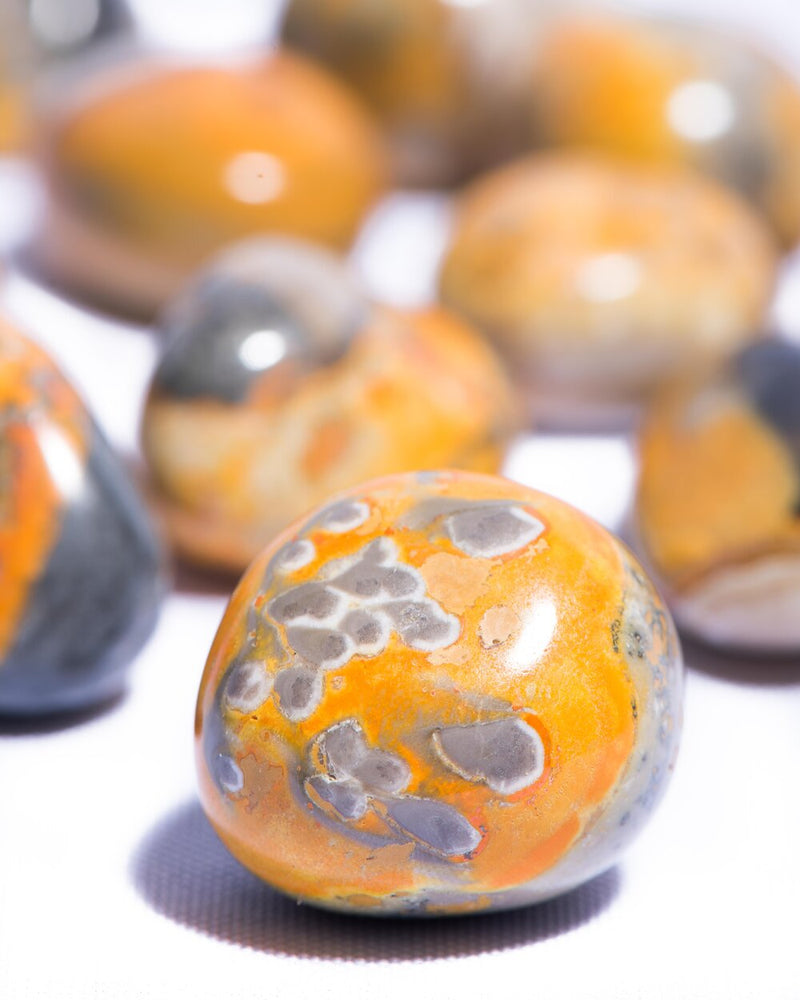 Bumble Bee Jasper Tumbled