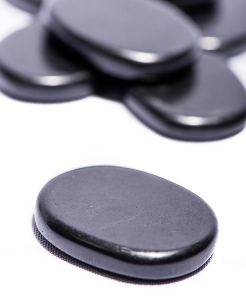 Shungite Disc