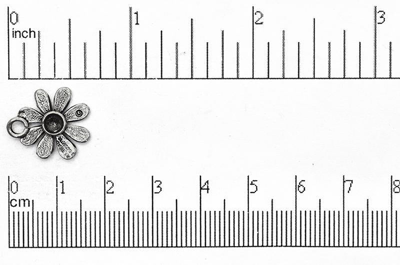 Charm Pewter CBS1503 Pewter Charm CBS1503AP