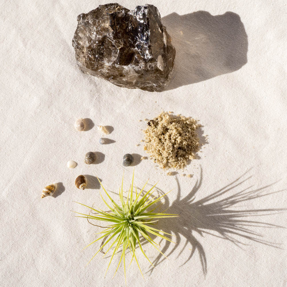 smoky quartz crystal air plant