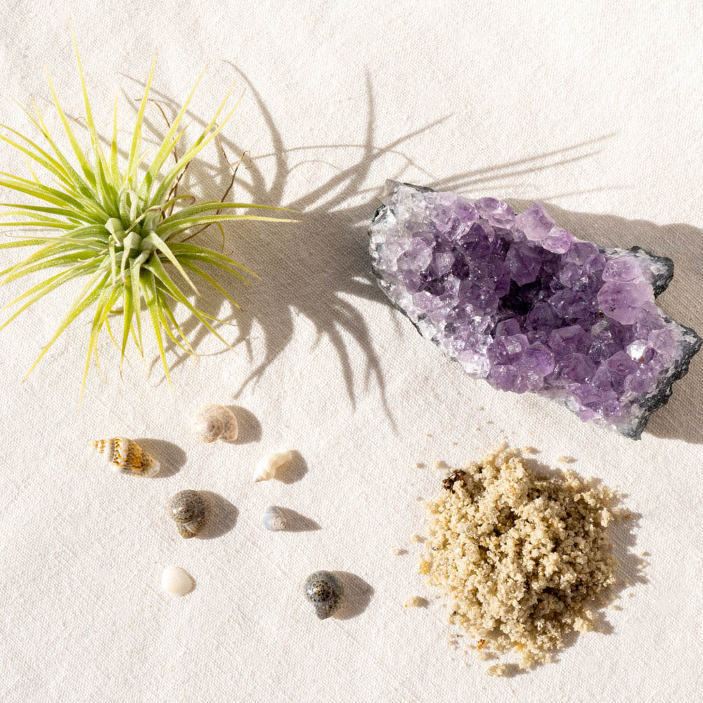 crystal air plant kit
