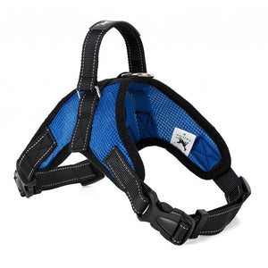 Mesh Dog Harnesses for all sized dogs - Blue