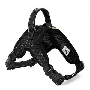 Mesh Dog Harnesses for all sized dogs - Black