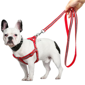 Nylon Reflective Dog Harness & Leash Set - Red