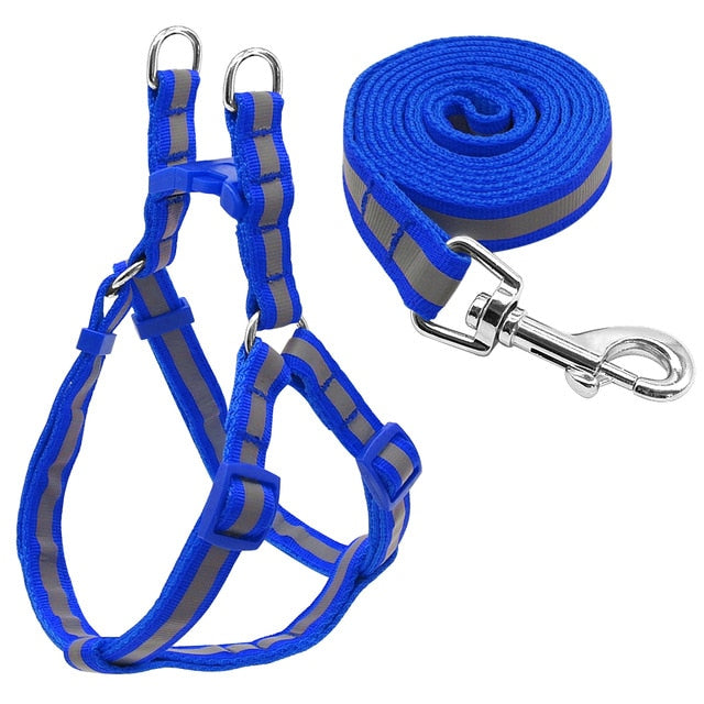 Nylon Reflective Dog Harness & Leash Set - Blue