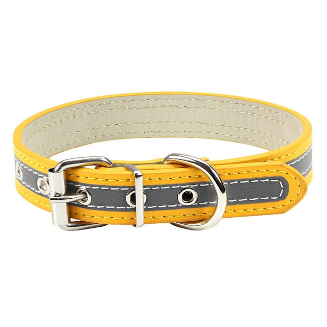 Reflective Dog Collar - Gold