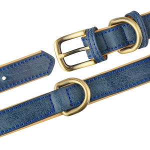 Leather Dog Collar - Blue