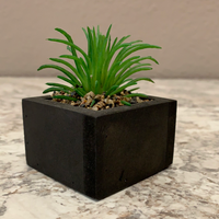 Green Spikey Succulent Planter