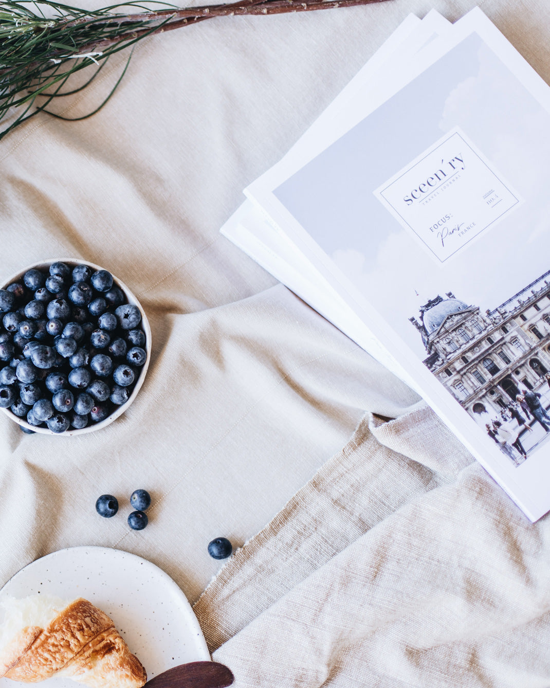 Sceen'ry magazine on the table with blueberries