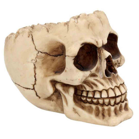 Lobo-skull-ashtray-1_SECTHLQ5J6LI.jpg