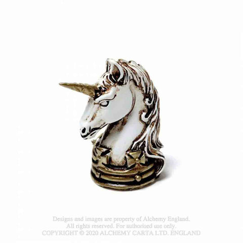 Miniature-unicorn-head-1_SE05BKCXKGQV.jpg