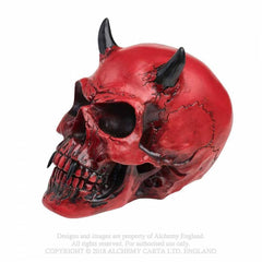 Another view of crimson-demon-skull_(1)_S41QQ8CQK79A.jpg