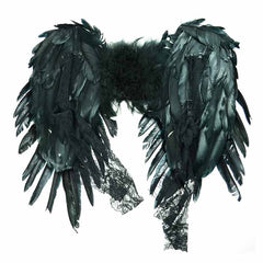 View Image of wings-black_-_Copy_RFMZ90N5GVQN.jpg