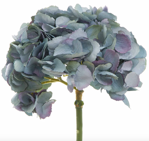 English Hydrangea Stem - Blue
