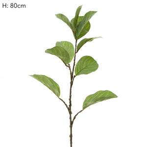 Ficus Leaf Spray - Green