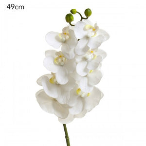 Orchid Spray - White - Set/4