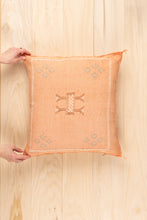 Load image into Gallery viewer, Colotenango Pillow