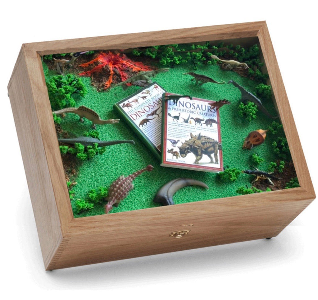 Dinosaur Keepsake and Memory Box