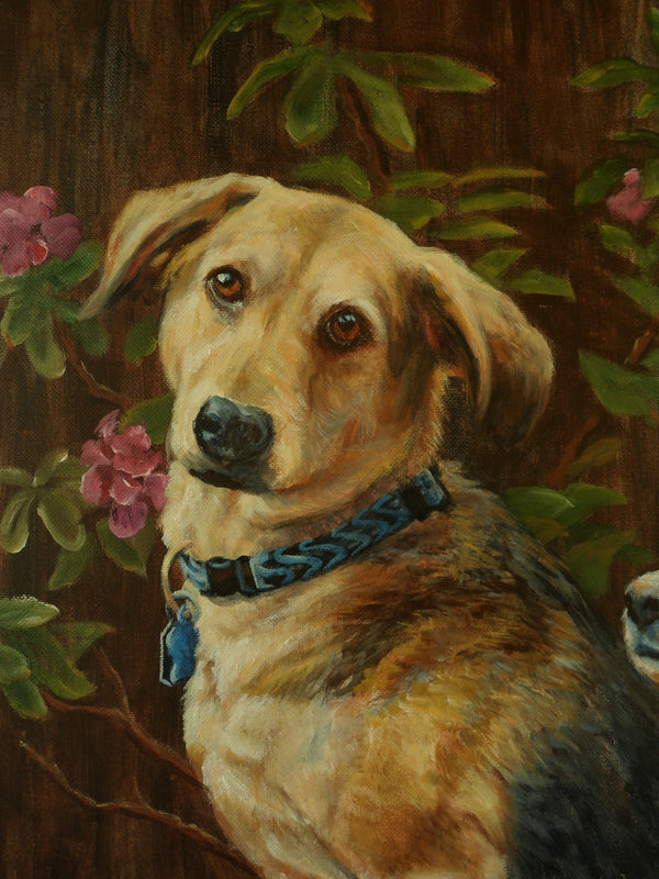 Custom Pet Portrait in Oil (Head & Shoulders)