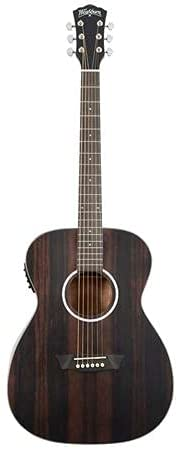 Washburn Deep Forest Ebony FE Acoustic Guitar, Striped Ebony