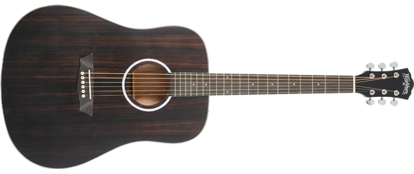 Washburn Deep Forest Ebony D Acoustic Guitar, Striped Ebony
