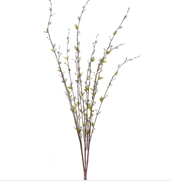 Pussy Willow Bundle