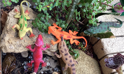 Lizards and Reptiles toys
