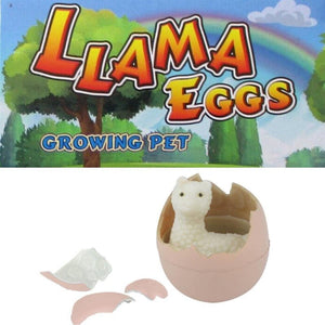 growing llama jumbo egg