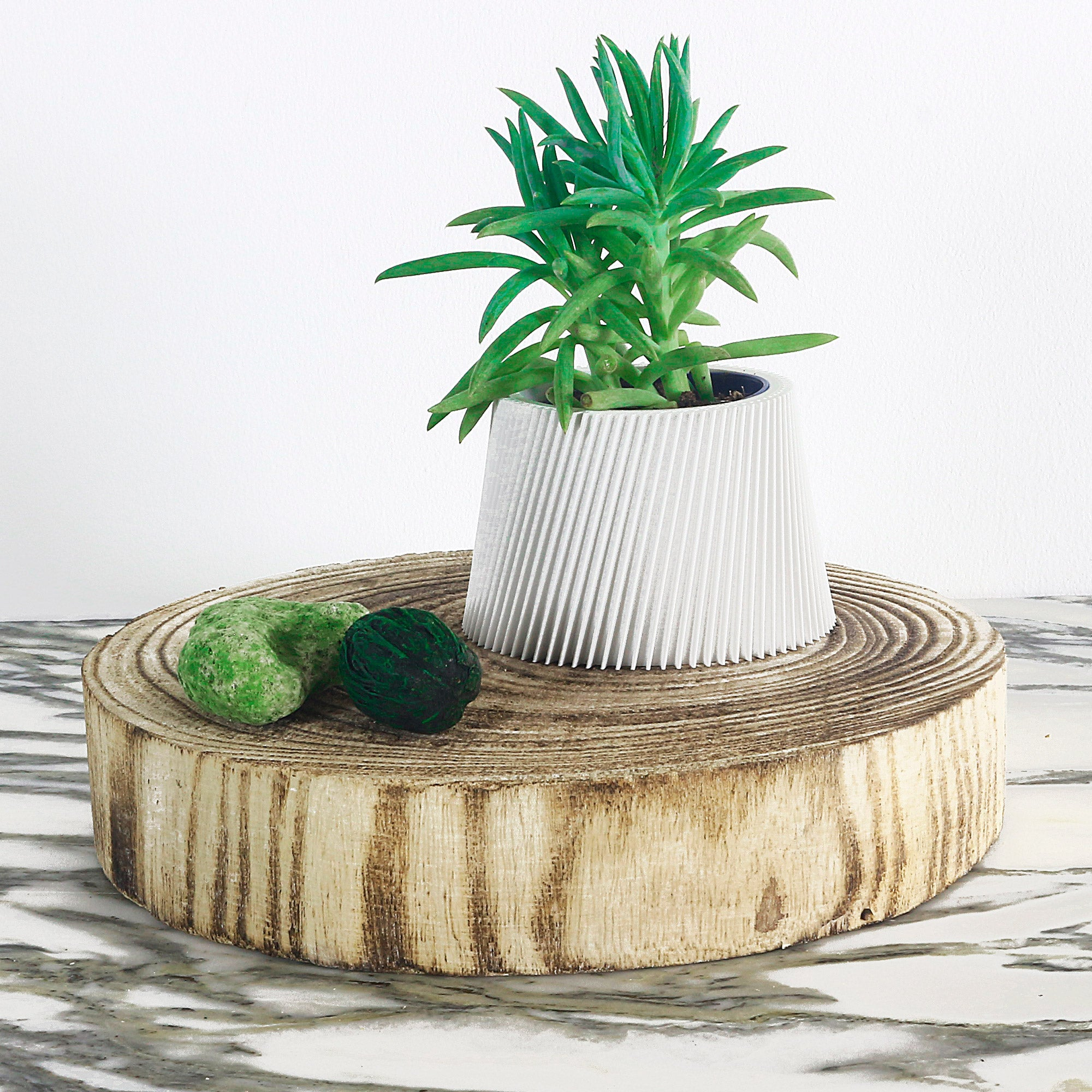 Matte White Planter ° LYNA °