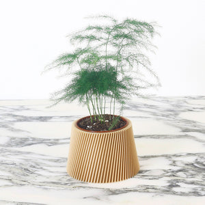 Wood Planter ° LYNA °