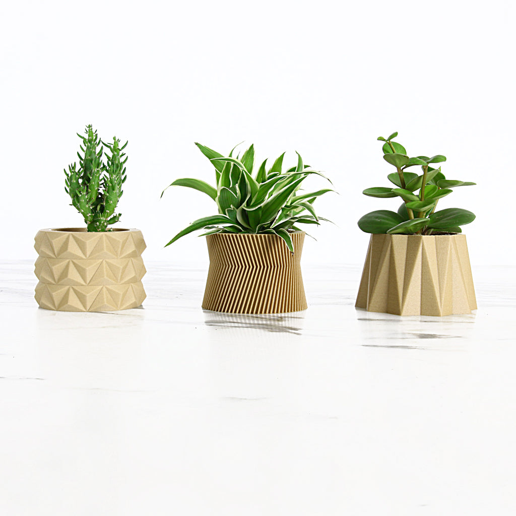 Set of 3 Wood Planters #2