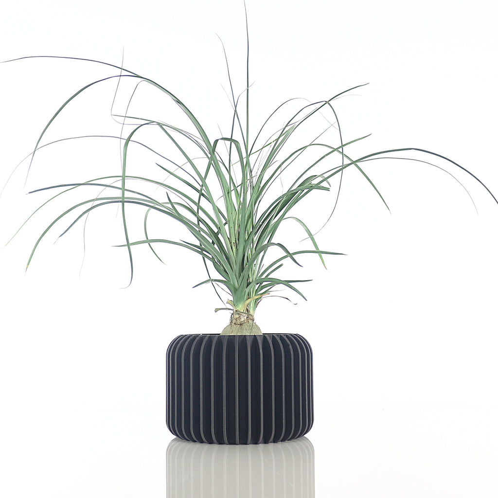 Big Planter ° NANO ° . Matte Black