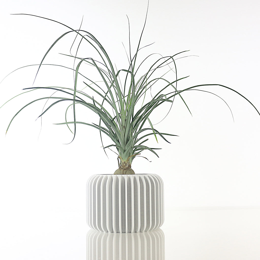 Big Planter ° NANO ° . Matte White
