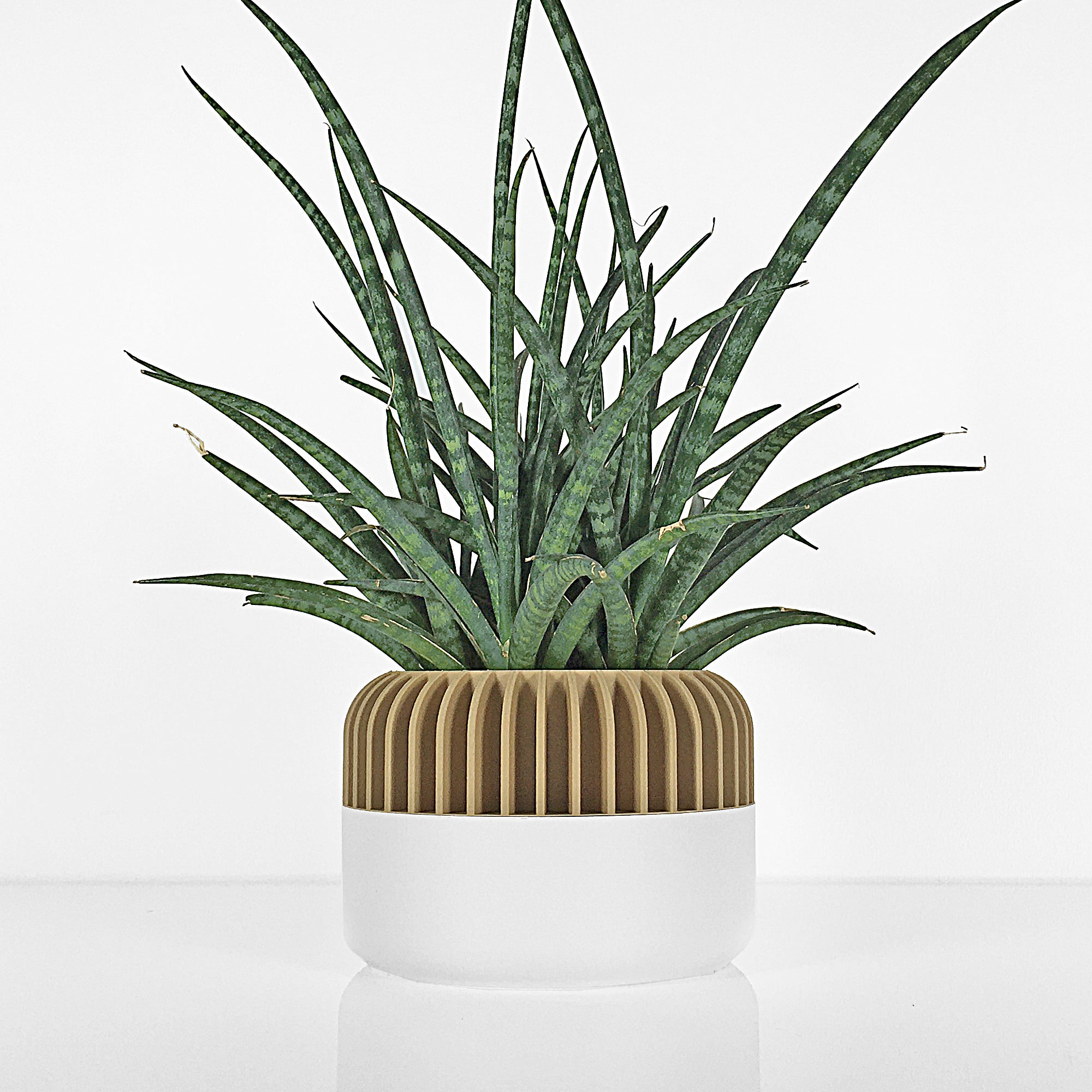 Big Planter ° OBUU ° . Matte White & Wood