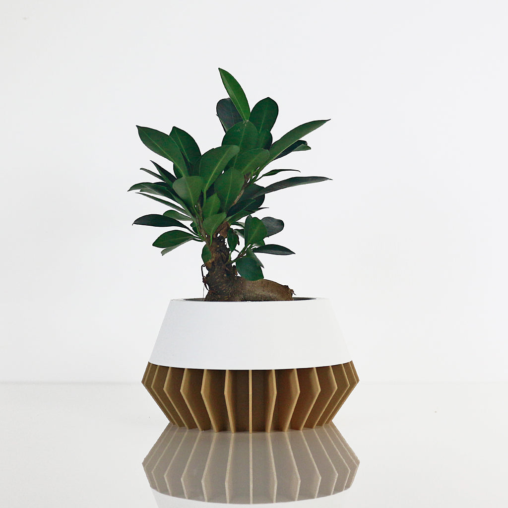 Big Planter ° SUNA ° . Wood / Matte White