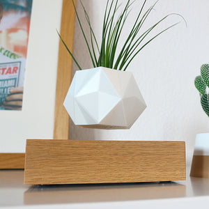 plant levitation zen pure levitate gift idea for planter fly