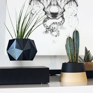 ikon pure levitate gift idea for plant planter levitation fly