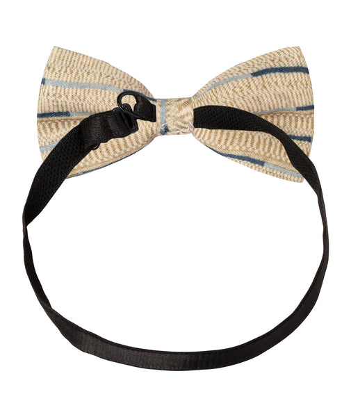 Cream and Blue Printed Bow Tie