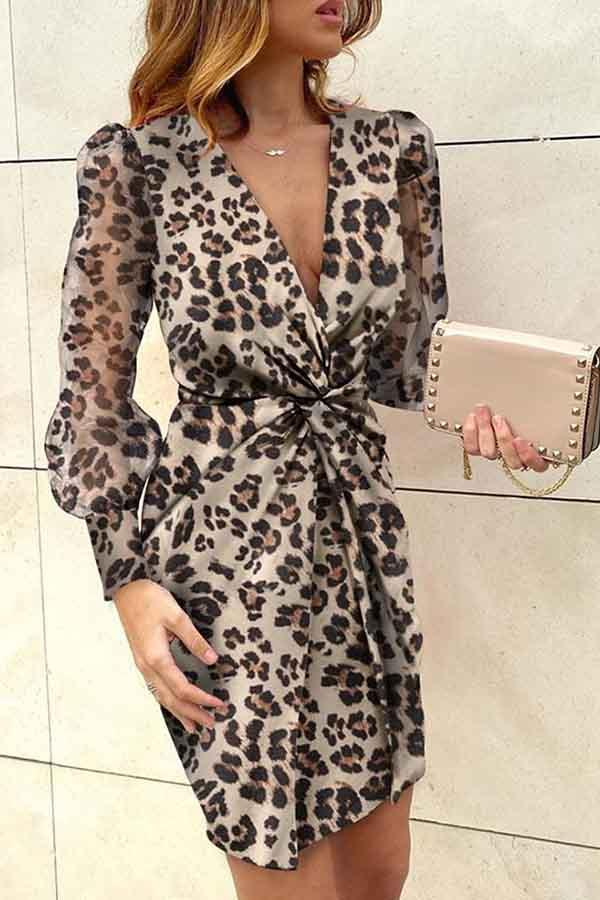 Long Sleeve Printed V Neck A-Line Dress