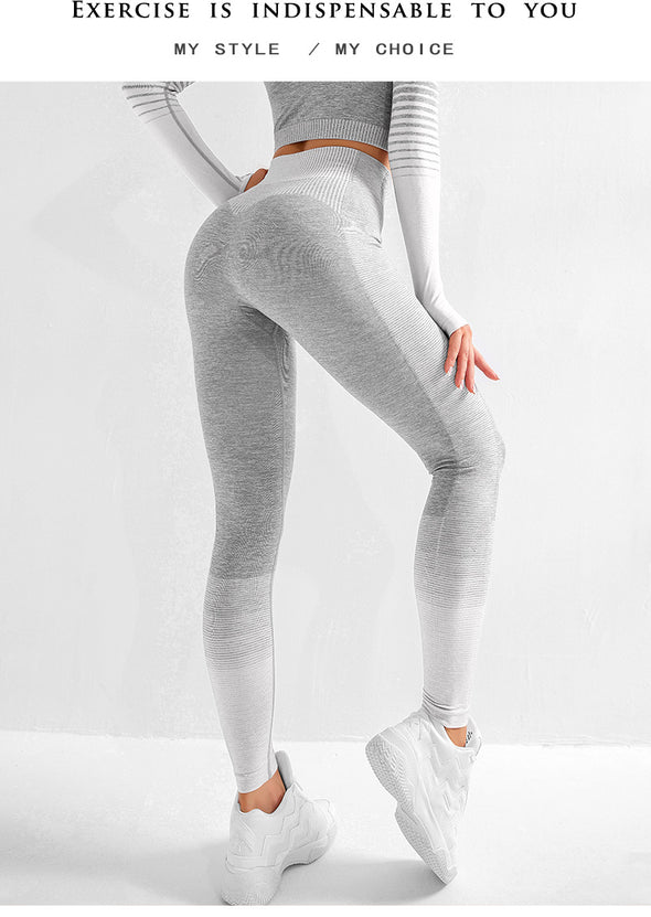Olympia Seamless Compression Leggings