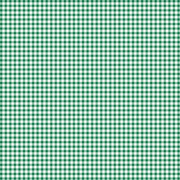 Warp and Weft Holiday- Mini Gingham Pine