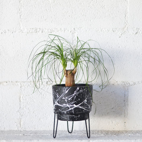 White Splatter Planter
