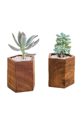 "Handmade in Kampala, Uganda. Geometric Mugavu Planter from Rose and Fitzgerald. Its geometric form featuring beautiful, deeply grained Mugavu wood makes this planter a stunning addition to a shelf or tabletop. Designed with a focus on simplicity, it's a beautiful way to display greenery. Each planter is individually crafted from start to finish by a group of woodworkers in a fair trade environment in Kampala, Uganda Measurements 4""H x 4""W."