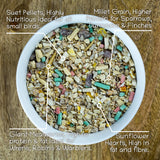 Bird Food Seed Mix with Giant Mealworms & Suet Pellets, 2kg & 5kg