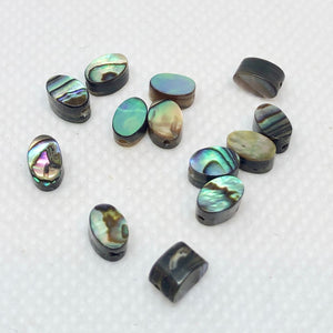 13 Gorgeous! Abalone Oval Coin Beads 004556 - PremiumBead