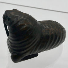 "Load image into Gallery viewer, Old Walrus of the Sea Teak Ojime/Netsuke Bead | 2""x7/8""x1 1/2"" 